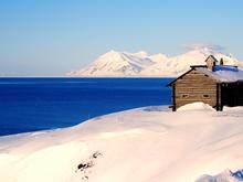 Красноярцам предложат бесплатно получить «Арктический гектар»
