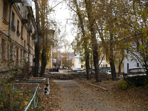 Застройщик ЖК «Лесопарковый» озвучил планы реновации квартала за «Калибром»