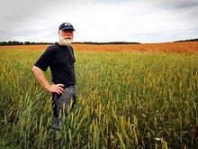 РСХБ представил три новых сервиса для сельхозпредпринимателей