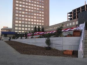 Возле челябинского Центра международной торговли за ночь выросли ели