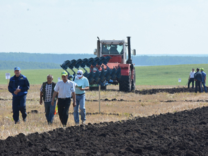 Сельхозпроизводителям Челябинской области вдвое снизят налоги