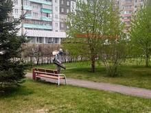 Красноярск обрабатывают средствами от клещей