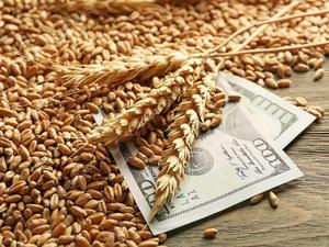 Аграрии Красноярского края экспортировали  продукции на почти 25 млн долларов