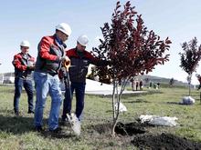 РМК потратит свыше 2 млрд руб. на экологические проекты