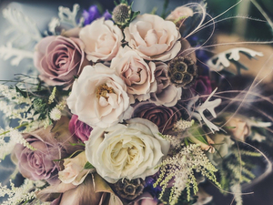 Delivery Club запустил доставку цветов в Новосибирске