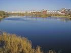 «Из пустыря – в зону отдыха». На благоустройство Мещерского озера потратят 21 млн руб.