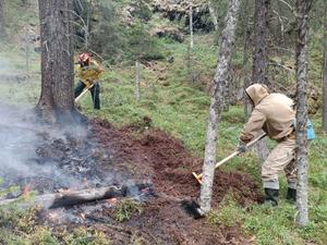 В заповеднике «Денежкин камень» снова пожар. Тушат сразу два возгорания