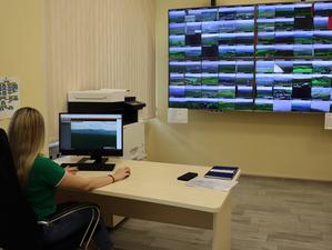 Умные камеры помогли потушить более 60 лесных пожаров в Красноярском крае