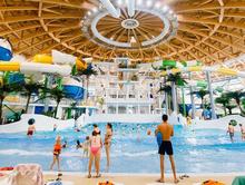 Экс-директоров компании-застройщика аквапарка привлекут к субсидиарной ответственности
