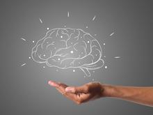 Неважно чему, главное — учиться. Как мы необратимо теряем память уже с 40 лет
