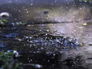 Жару в Красноярске сменят дождь и ураган