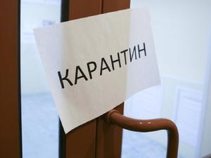 Блиц-опрос: Чего вы ждете от власти в связи с ограничениями?