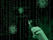 В Нижегородской области пресекли продажу фальшивых прививочных сертификатов через интернет
