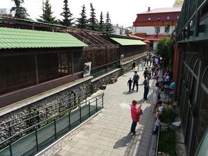 Екатеринбургский зоопарк не станут переносить в Новокольцовский