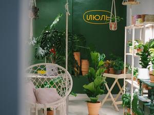 Магазин живых растений нового формата объявил об открытии в Челябинске
