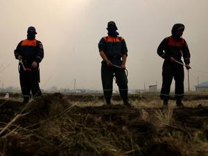За несколько дней до визита Путина на Южном Урале произошел новый крупный лесной пожар