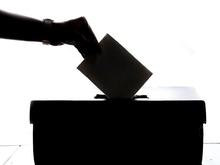 На выборы в Госдуму от Новосибирской области зарегистрировались 40 кандидатов