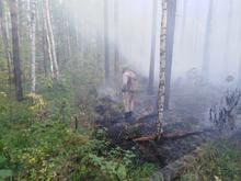 Лесной пожар у озера Глухого затянул Екатеринбург смогом