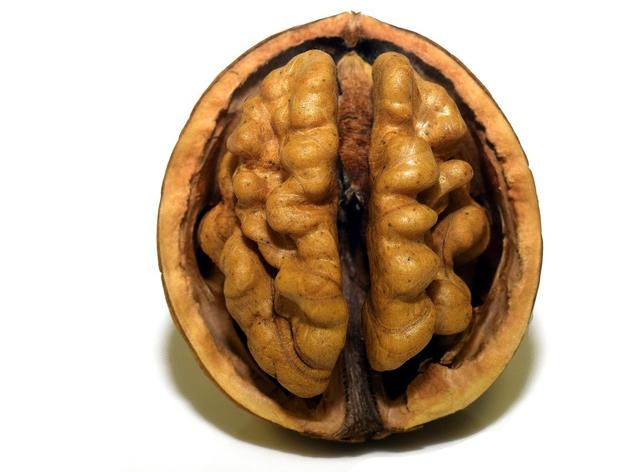 Повседневное окружение мешает мозгу работать в полную силу. Что не так с вашей жизнью?