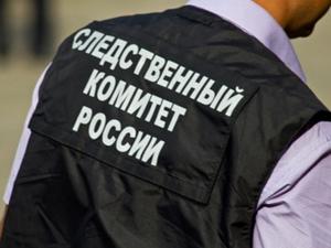 СКР России: найденное в Тюмени тело принадлежит пропавшей Насте Муравьевой