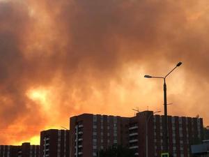 Лесные пожары: в Сарове несколько очагов, есть риск возгорания в Первомайске