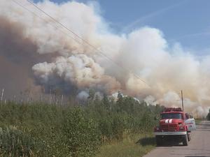 Лесные пожары все ближе. В Первомайске введен режим ЧС