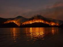 Пожары под Екатеринбургом не могут потушить несколько дней. МЧС эвакуирует садоводов