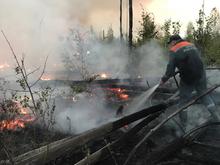 Новые очаги лесных пожаров из Мордовского заповедника обнаружены в Нижегородской области