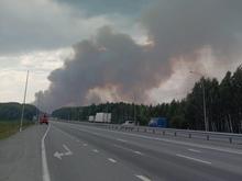 Огонь от лесного пожара подобрался к федеральной трассе под Ревдой. Ее перекрыли