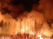 Августовские пожары обошлись Свердловской области в десятки миллионов рублей