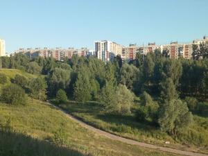 ООО «Дэнси» лишилось земельного участка в Лопатинском овраге. Теперь окончательно
