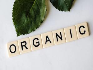 Аналитики фиксируют повышение спроса на органические продукты