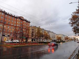 Мэрию Челябинска уличили в антиконкурентном сговоре по озеленению проспекта Ленина