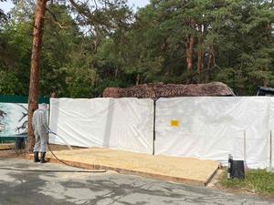Челябинский зоопарк частично закрыли на карантин из-за птичьего гриппа