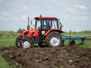 Тюменские власти избавляются от еще одного сельскохозяйственного актива