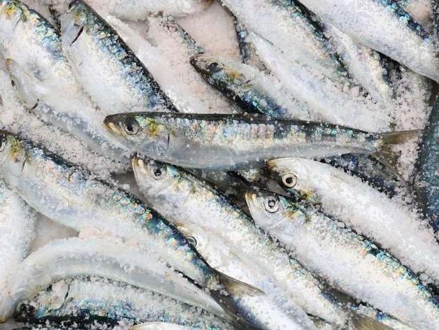 Рыба в заложниках. Поставщик продукта попал в энергетическую блокаду, власти в курсе