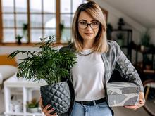 5 советов, как развивать экологичный HR-бренд