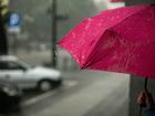 Одним из самых дождливых городов России признали Новосибирск