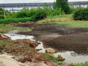Химическое производство почти год загрязняло отходами почву в Кстовском районе