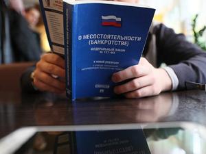 Недвижимость обанкротившейся фирмы Дубровского выставили на аукцион