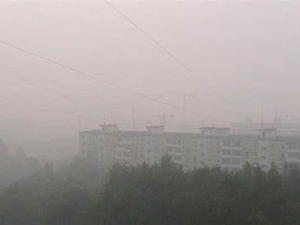 Дым распространяется на новые районы: 120 га горящего торфяника под Екатеринбургом