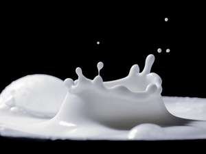 В корпоративный конфликт на молочном заводе «замешали» депутата Госдумы